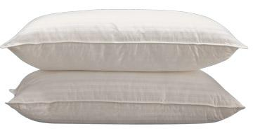 Sleep-Rite Pillow